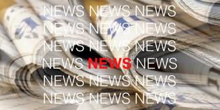 Aktuelle Berichte / News
